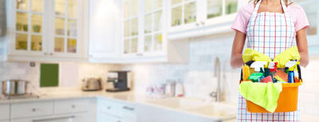 Young professional Housemaid woman. Cleaning service background.
