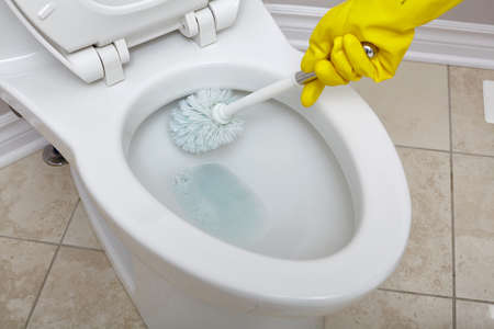Flush toilet bowl cleaning with a brush in bathroom. Standard-Bild