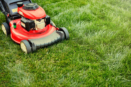 Red lawnmover on green grass