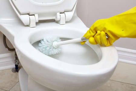 Flush toilet bowl cleaning with a brush in bathroom. Banco de Imagens