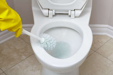 Flush toilet bowl cleaning with a brush in bathroom. Stock Photo