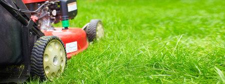 잔디 깎는 기계