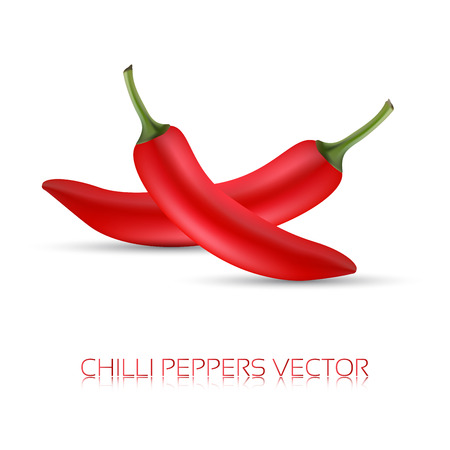 capsaicin: Whole red chili peppers, realistic illustration of a chilli pappers, icon, chilli image, vector illustration