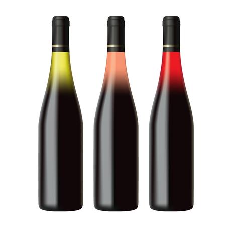 aligote: Set of white, rose and red wine bottles isolated on white background, realistic vector illustration Illustration