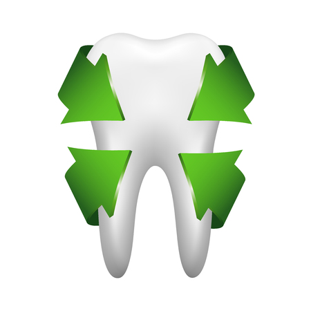 White tooth with four green arrows, stomatology icon isolated on white background, realistic vector illustration