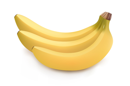 Realistic illustration of bunch of bananas isolated on white background, banana icon, banana image, vector illustration