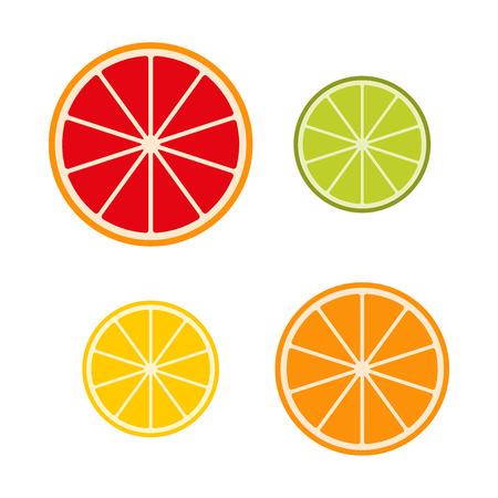 grapefruit juice: Collection of citrus slices – grapefruit, lime, lemon and orange, fruit icon set, vector illustration