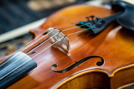 Close up of violin strings with shallow depth of field.