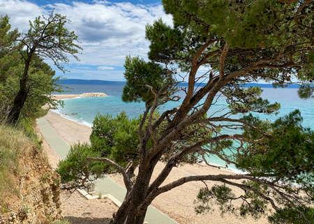 Empty beach in Dalmatia with typical Croatian pine trees Stock fotó