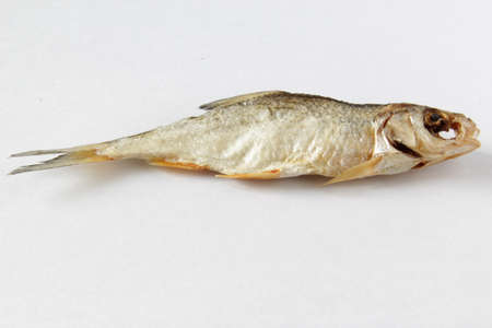 Dried fish on gray background. Salty dry river fish on a light gray background. Top view. Copy space. Reklamní fotografie