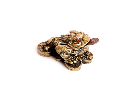 welth: A bronze feng shui frog with a coin in its mouth isolated