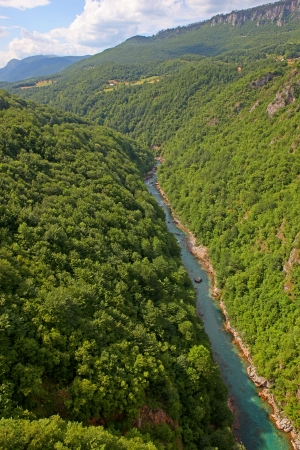tara: A view of the Canyon of the Tara river, Montenegro  Stock Photo
