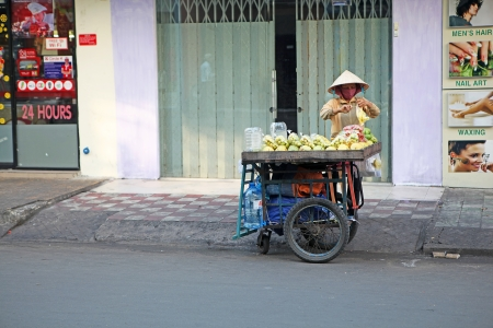 indigence: Fruit seller with a cart full of pomelo, mango and other fruit early in the morning on empty streets of Saigon, Vietnam.