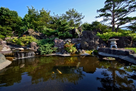 nishikigoi: Japanese garden with a small waterfall and a pond with koi. Stock Photo