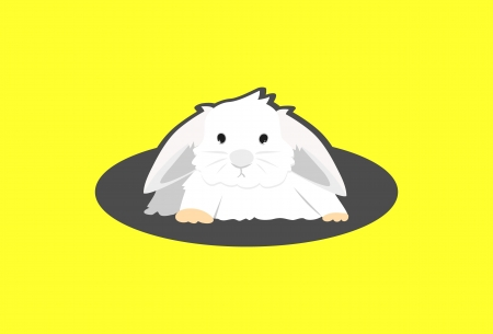 jackrabbit: White Rabbit