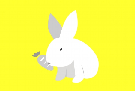 White Bunny  Vector