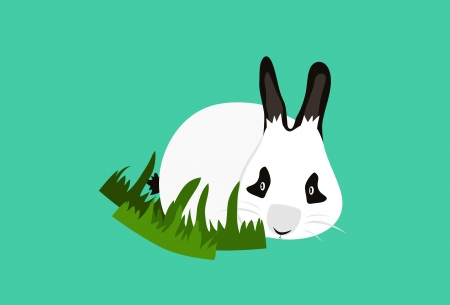 Panda Rabbits Vector