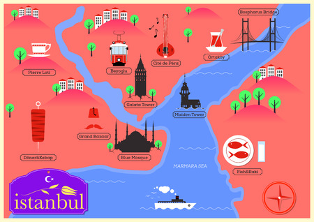 City Map of Istanbul, Turkey Vector