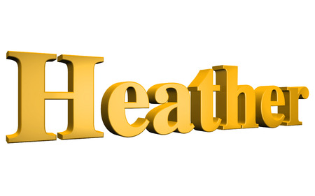 heather: 3D Heather text on white background