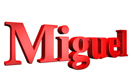 special individual: 3D Miguel text on white background