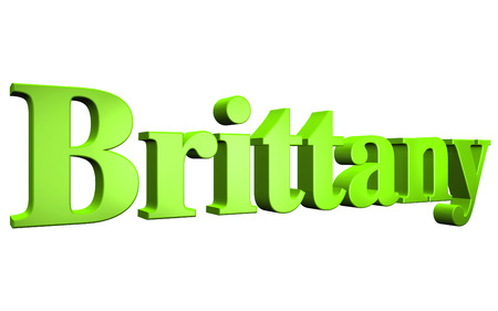 3D Brittany text on white background