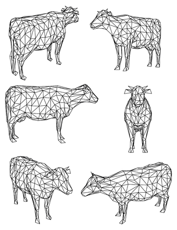 Cow polygonal lines illustration. Abstract vector cow on the white background Ilustracja