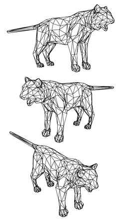 Tiger polygonal lines illustration. Abstract vector tiger on the white background Zdjęcie Seryjne - 103790327
