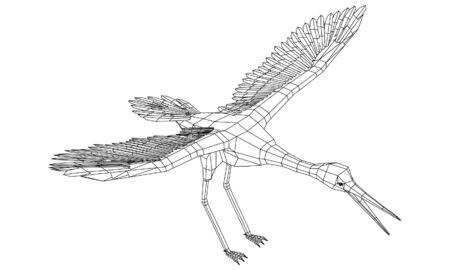 Stork bird polygonal lines illustration. Abstract vector bird on the white background