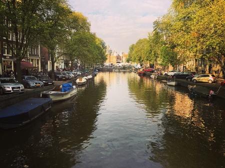 daydream: Lazy River