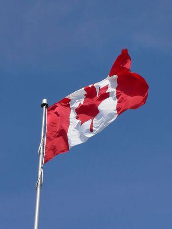 Canadese vlag 10.856. Een Canadese vlag op een vlag hoge mast in de wind over de helder blauwe hemel.
