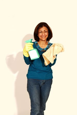 Mujer limpiando la casa.  Foto de archivo - 2550683
