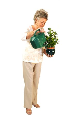 An senior woman standing and watering a plant, for white background.