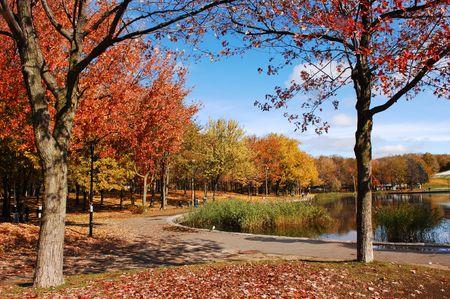 Fall in de park met zeer kleurrijke bomen, blauwe hemel en een meer in Montreal op Mount Royal. Stockfoto