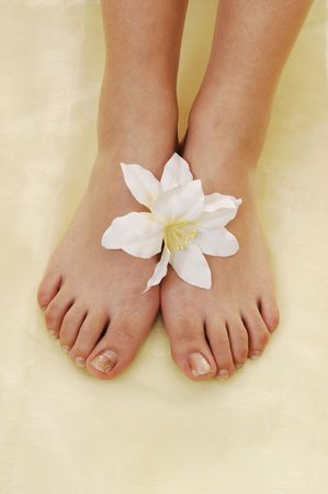The nice bare feet of a woman on yellow twill with a white lily between the feet. photo