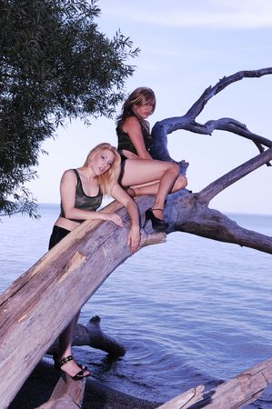 Two pretty woman sitting on an old tree over the water from lake Ontario in shorts and high heels, smiling into the camera.   photo