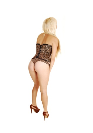 A young blond woman in a brown corset and thong standing from theback for white background, showing her nice figure   Stock Photo - 17165916