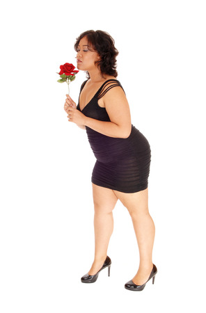high size: A young full size woman in a black dress, holding a red rose in her hand standing in high heels isolated for white background. Stock Photo