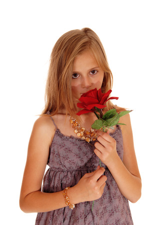 girl in burgundy dress: A pretty young girl in a burgundy dress holding up a red roses, smiling it, isolated for white background.