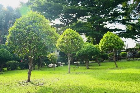 relent: garden  Stock Photo