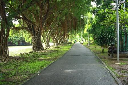 pathway for running Stock fotó