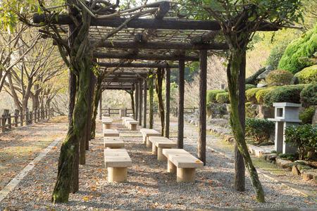 headrest: The park bench