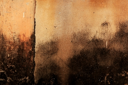 blotted: Old, blotted wall Stock Photo