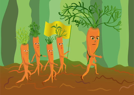 genetically modified: genetically modified carrots general and its army