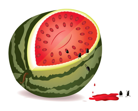 Six alive seeds escape from GMO water-melon