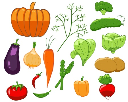 Set of isolated colorful vegetables in simple style