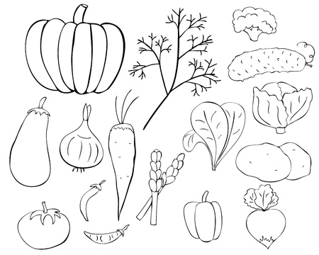 Set of graphic vegetables in doodle style
