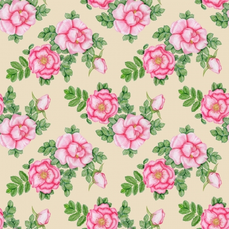 Gentle floral seamless pattern with dog-roses photo