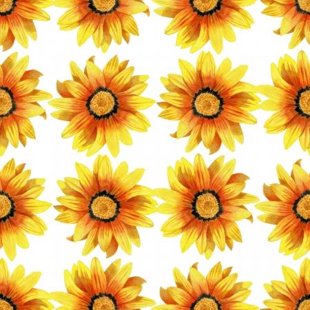 georgina: Bright penciled dahlia flower pattern Stock Photo