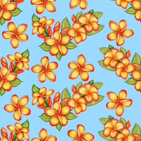Gentle pattern with plumeria flowers