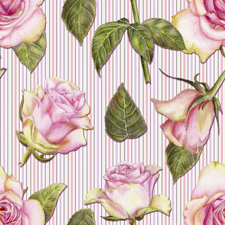 Beautiful pencilled pattern with roses on striped background